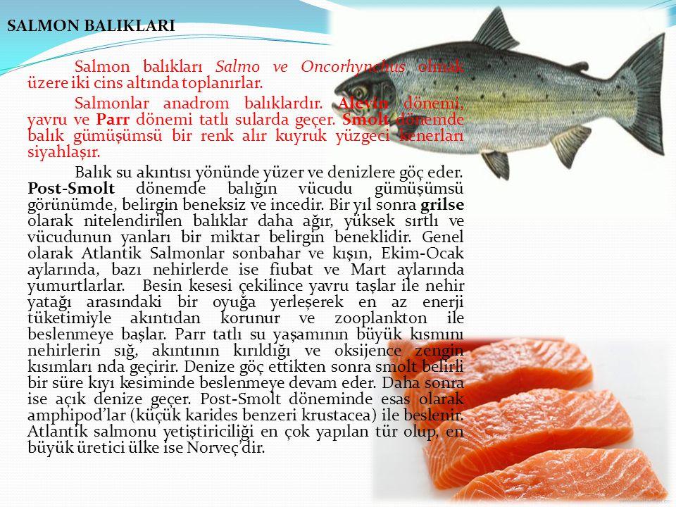 Hormon Enjeksiyonu Balıklarda yumurta alımını hızlandırmak için hormon enjeksiyonu uygulanmaktadır.