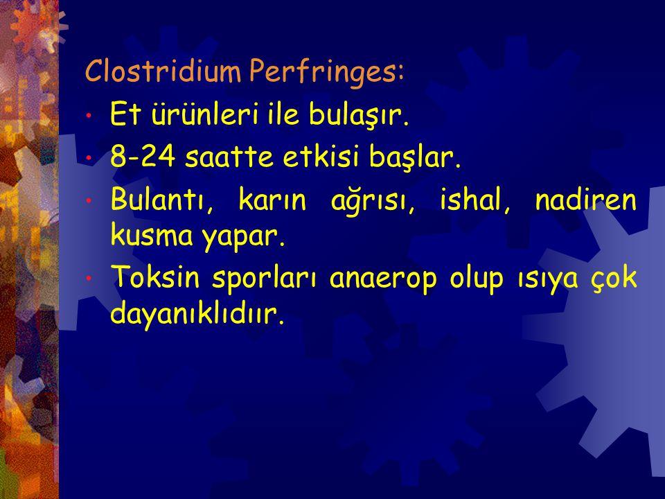 Clostridium Perfringes: Et ürünleri ile bulaşır.8-24 saatte etkisi başlar.