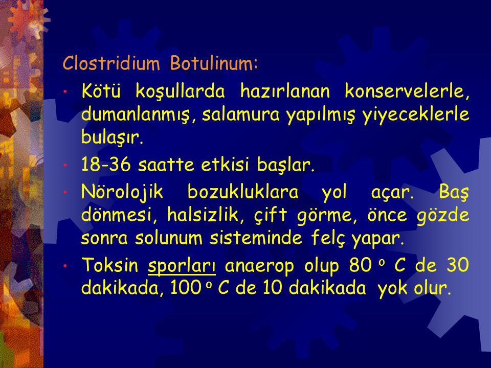 Clostridium Botulinum: Kötü koşullarda hazırlanan konservelerle, dumanlanmış, salamura yapılmış yiyeceklerle bulaşır.