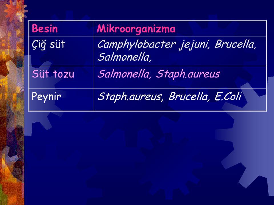 BesinMikroorganizma Çiğ sütCamphylobacter jejuni, Brucella, Salmonella, Süt tozuSalmonella, Staph.aureus PeynirStaph.aureus, Brucella, E.Coli