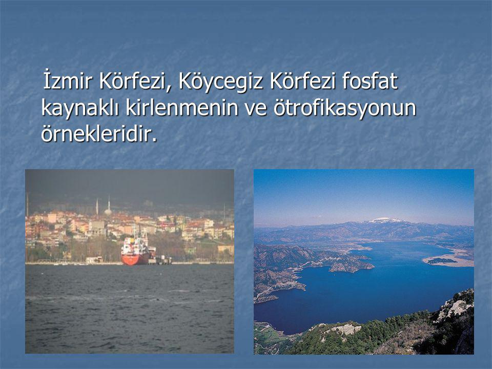 İzmir Körfezi, Köycegiz Körfezi fosfat kaynaklı kirlenmenin ve ötrofikasyonun örnekleridir. İzmir Körfezi, Köycegiz Körfezi fosfat kaynaklı kirlenmeni