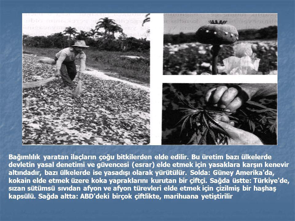 Bağımlılık yaratan ilaçların çoğu bitkilerden elde edilir. Bu üretim bazı ülkelerde devletin yasal denetimi ve güvencesi (esrar) elde etmek için yasak