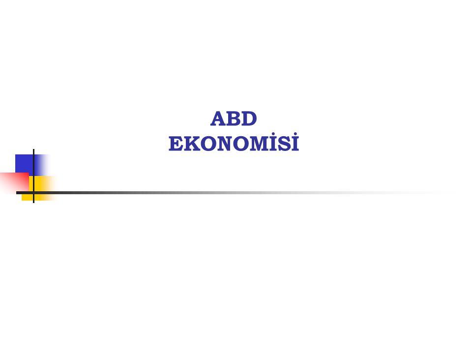 9 ABD'nin Makro Ekonomik Göstergeleri- 2009