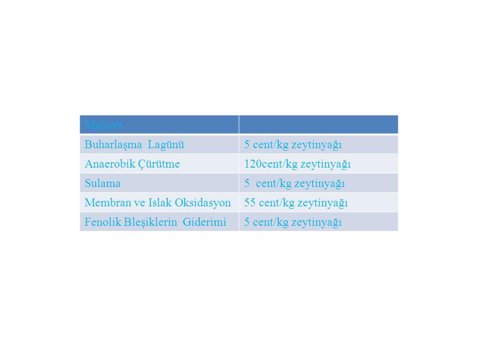 Maliyet Buharlaşma Lagünü5 cent/kg zeytinyağı Anaerobik Çürütme120cent/kg zeytinyağı Sulama5 cent/kg zeytinyağı Membran ve Islak Oksidasyon55 cent/kg