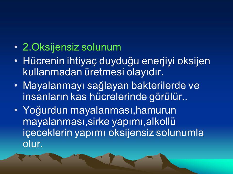 1-Oksijenli Solunum: Hücredeki besinlerin OKSİJEN ile parçalanarak enerji elde edilmesi. İnsanlar Hayvanlar Bazı bakteriler Bira mayası oksijenli solu