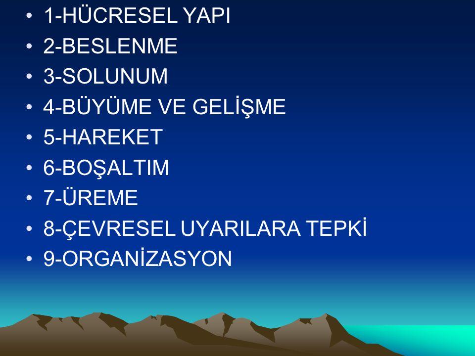 1-HÜCRESEL YAPI 2-BESLENME 3-SOLUNUM 4-BÜYÜME VE GELİŞME 5-HAREKET 6-BOŞALTIM 7-ÜREME 8-ÇEVRESEL UYARILARA TEPKİ 9-ORGANİZASYON