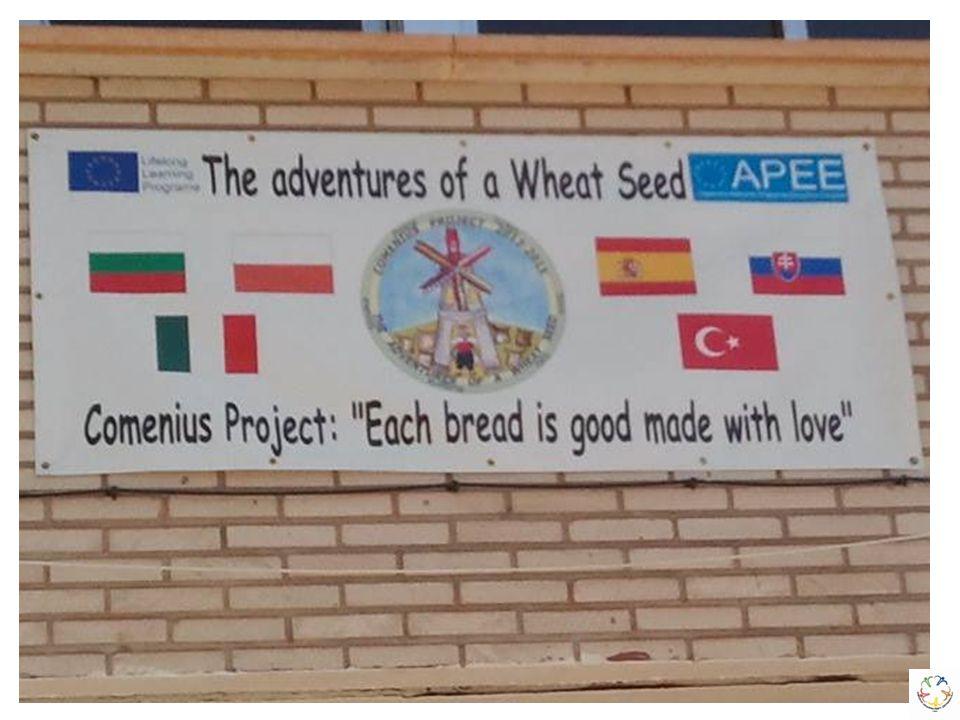 İSPANYA GEZİMİZDEN NOTLAR Okulumuz öğretmen ve öğrencileri The adventures of a wheat seed», «Bir Buğday Tanesi'nin Maceraları konulu Comenius Programı Çok Taraflı Okul Ortaklığı Projesi kapsamında 4.proje toplantısını 21-25 Ekim 2014 tarihleri arasında İspanya'nın Alcaraz kasabasında bulunan CEIP NUESTRA SENORA DE CORTES okulunda gerçekleştirdiler.