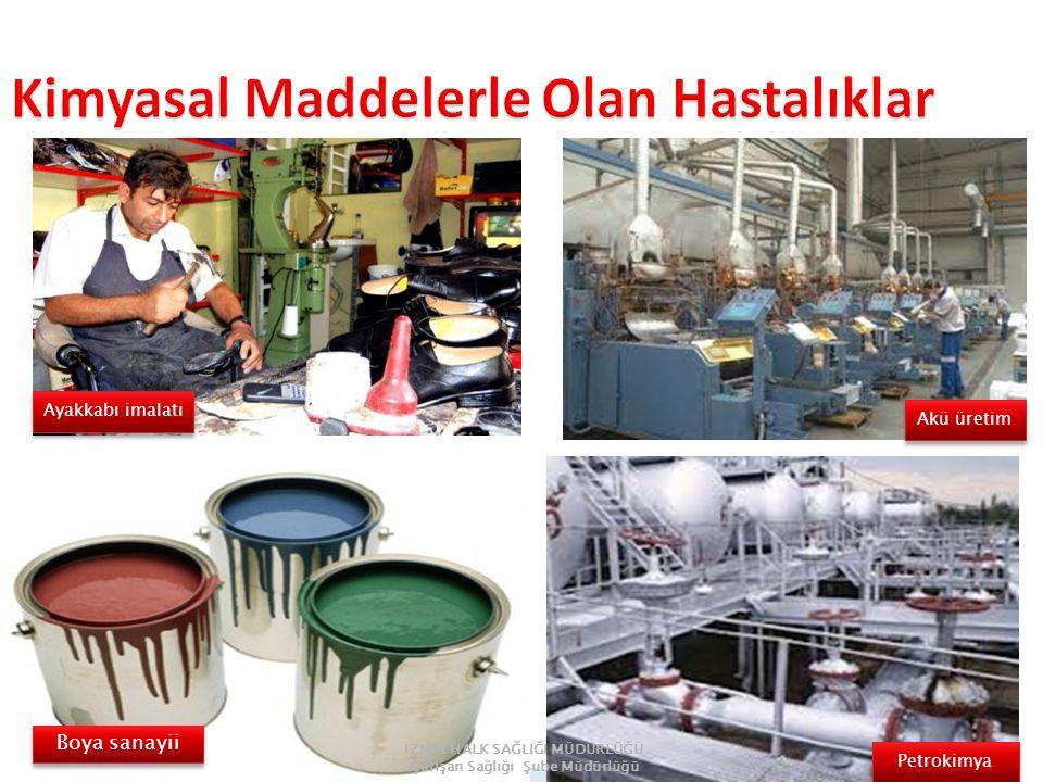 Ayakkabı imalatı Boya sanayii Akü üretim Petrokimya İZMİR HALK SAĞLIĞI MÜDÜRLÜĞÜ Çalışan Sağlığı Şube Müdürlüğü