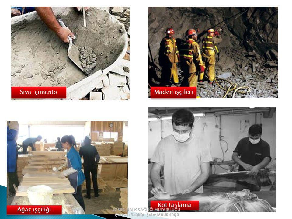 Sıva-çimento Maden işçileri Kot taşlama Ağaç işçiliği İZMİR HALK SAĞLIĞI MÜDÜRLÜĞÜ Çalışan Sağlığı Şube Müdürlüğü