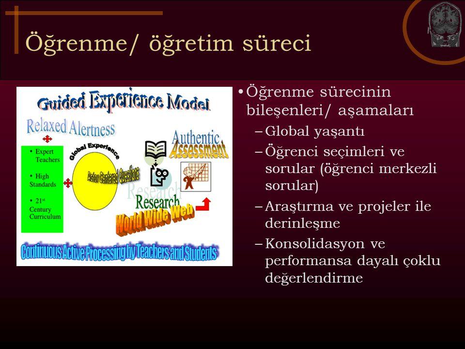 Öğrenme/ öğretim süreci Öğrenme sürecinin bileşenleri/ aşamaları –Global yaşantı –Öğrenci seçimleri ve sorular (öğrenci merkezli sorular) –Araştırma v