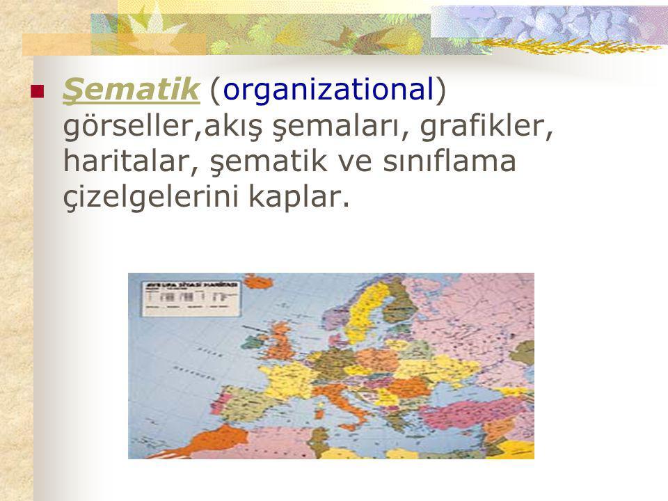 Şematik (organizational) görseller,akış şemaları, grafikler, haritalar, şematik ve sınıflama çizelgelerini kaplar.