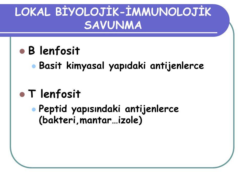 LOKAL BİYOLOJİK-İMMUNOLOJİK SAVUNMA B lenfosit Basit kimyasal yapıdaki antijenlerce T lenfosit Peptid yapısındaki antijenlerce (bakteri,mantar…izole)