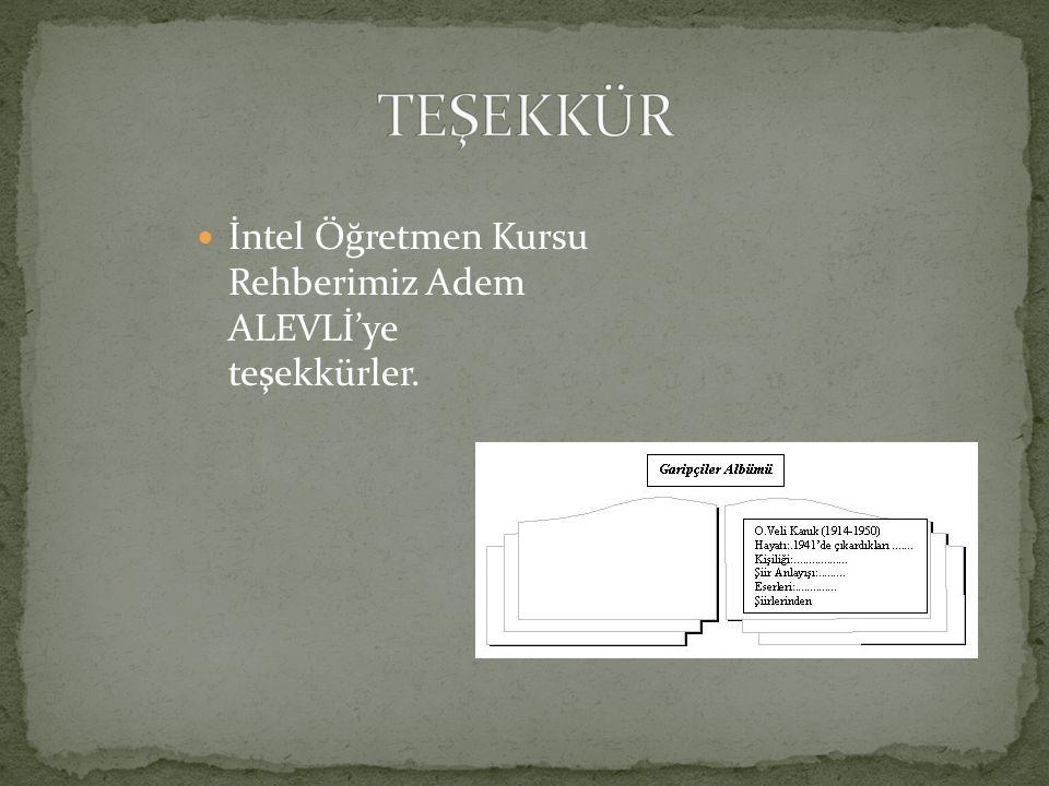 İntel Öğretmen Kursu Rehberimiz Adem ALEVLİ'ye teşekkürler.
