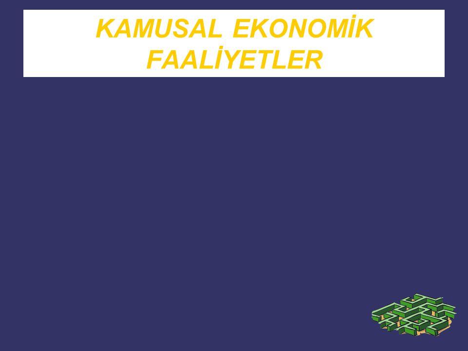Tüm ekonomik faaliyetler kamu kesimi ve özel kesim tarafından gerçekleştirilir.