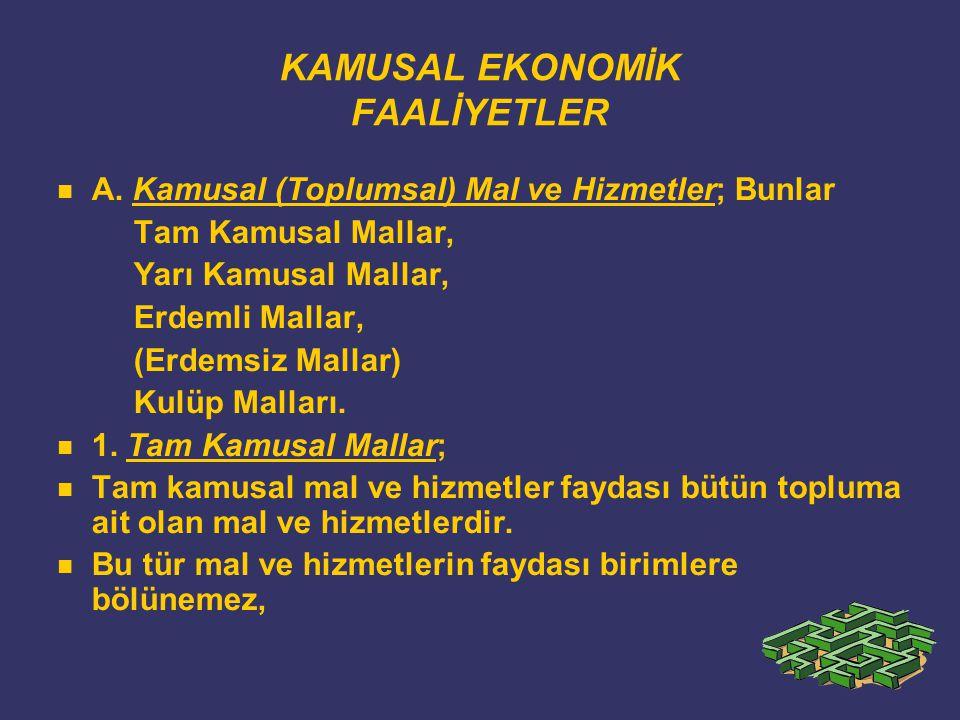 KAMUSAL EKONOMİK FAALİYETLER A.