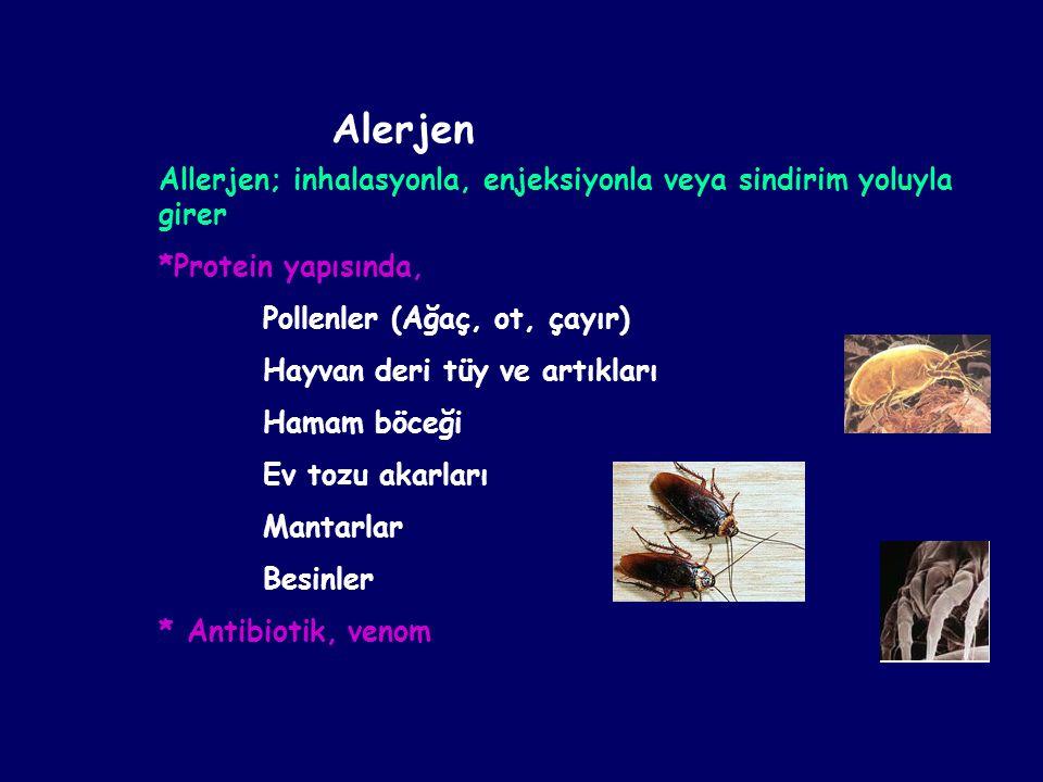 Allerjen; inhalasyonla, enjeksiyonla veya sindirim yoluyla girer *Protein yapısında, Pollenler (Ağaç, ot, çayır) Hayvan deri tüy ve artıkları Hamam bö