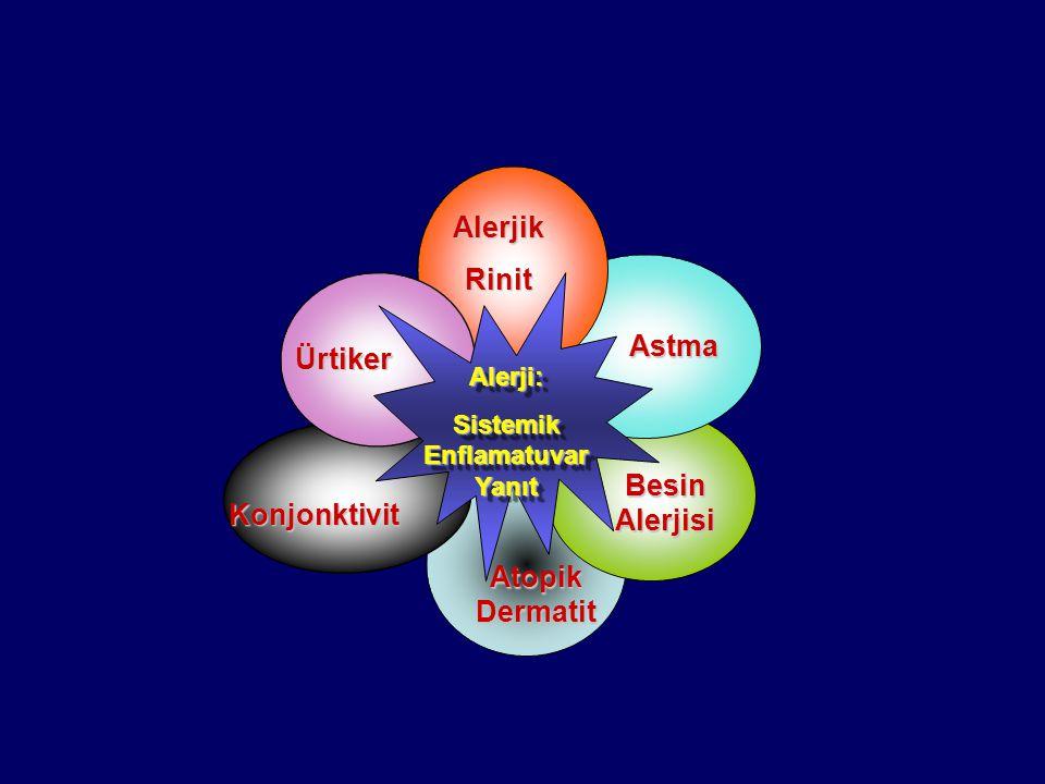 Atopik Dermatit Ürtiker Konjonktivit Astma Alerjik Rinit Besin Alerjisi Alerji: Sistemik Enflamatuvar Yanıt Alerji:
