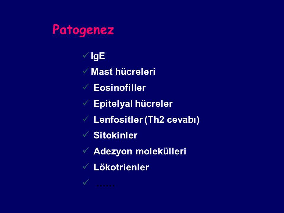 Patogenez IgE Mast hücreleri Eosinofiller Epitelyal hücreler Lenfositler (Th2 cevabı) Sitokinler Adezyon molekülleri Lökotrienler ……
