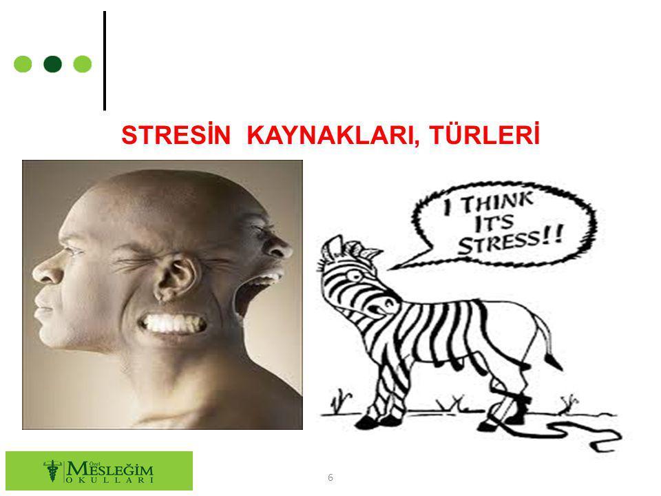 STRESİN KAYNAKLARI, TÜRLERİ 6