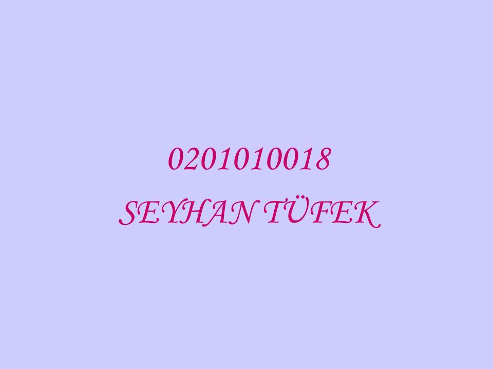 0201010018 SEYHAN TÜFEK