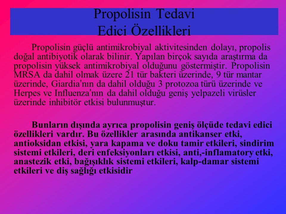 Propolisin Tedavi Edici Özellikleri Propolisin güçlü antimikrobiyal aktivitesinden dolayı, propolis doğal antibiyotik olarak bilinir. Yapılan birçok s