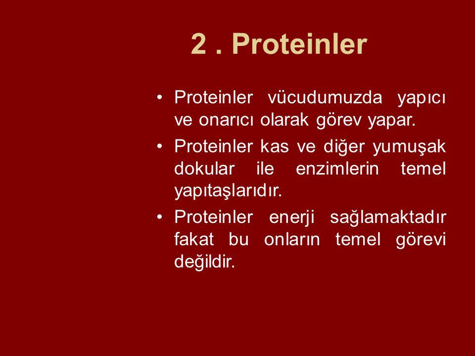 2. Proteinler Proteinler vücudumuzda yapıcı ve onarıcı olarak görev yapar. Proteinler kas ve diğer yumuşak dokular ile enzimlerin temel yapıtaşlarıdır