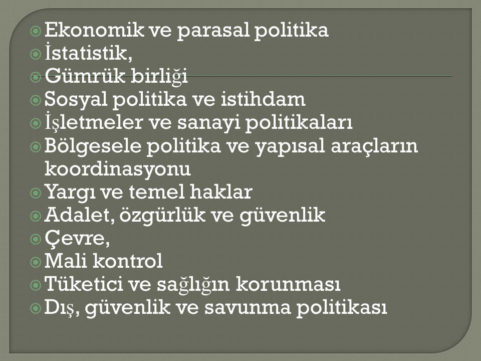  Ekonomik ve parasal politika  İ statistik,  Gümrük birli ğ i  Sosyal politika ve istihdam  İş letmeler ve sanayi politikaları  Bölgesele politi