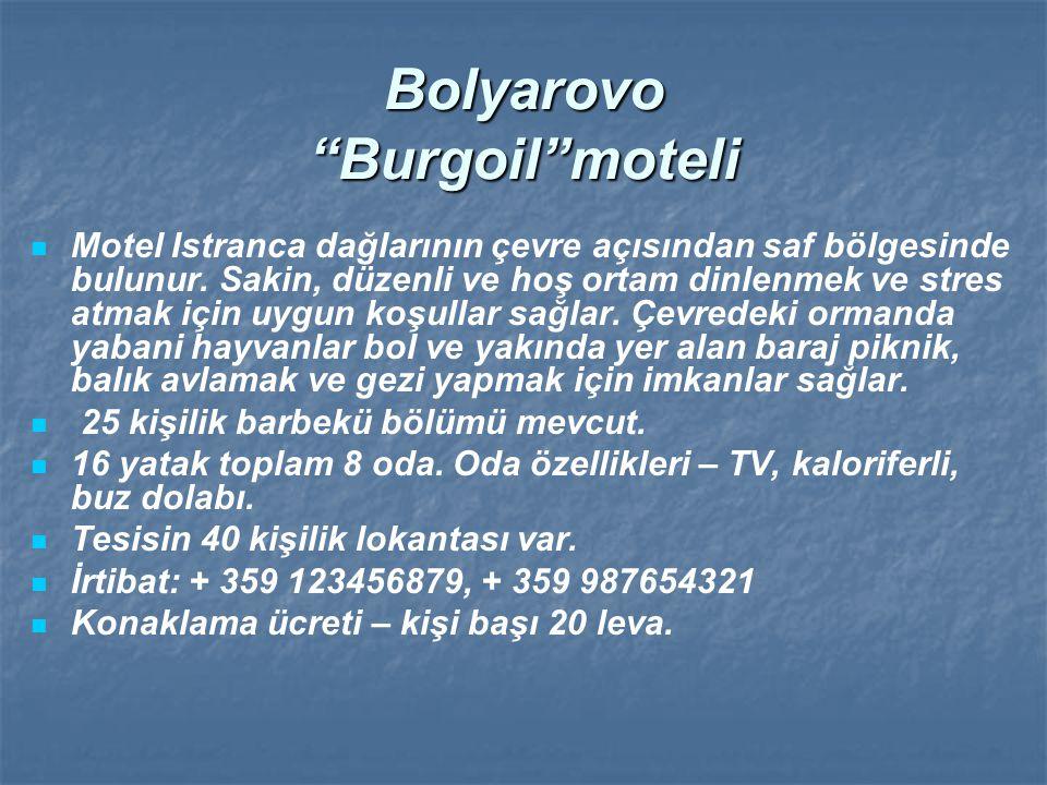 """Bolyarovo """"Burgoil""""moteli Motel Istranca dağlarının çevre açısından saf bölgesinde bulunur. Sakin, düzenli ve hoş ortam dinlenmek ve stres atmak için"""