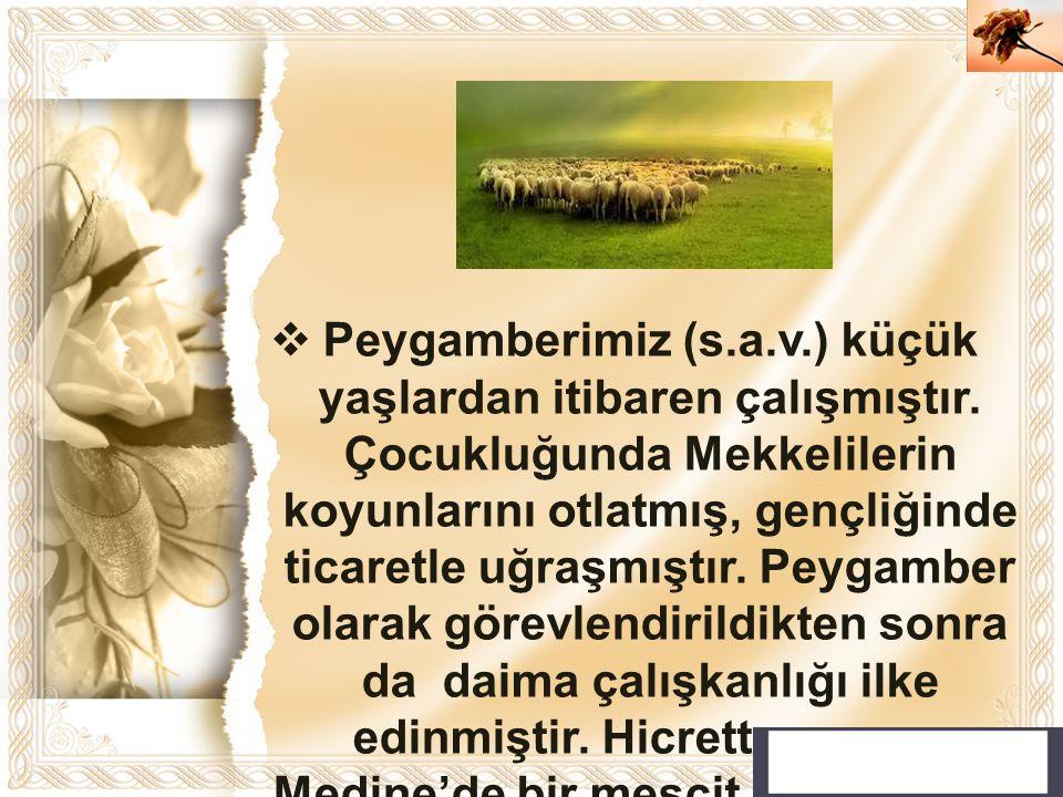 Cahide KAVAK  Peygamberimiz (s.a.v.) küçük yaşlardan itibaren çalışmıştır. Çocukluğunda Mekkelilerin koyunlarını otlatmış, gençliğinde ticaretle uğra