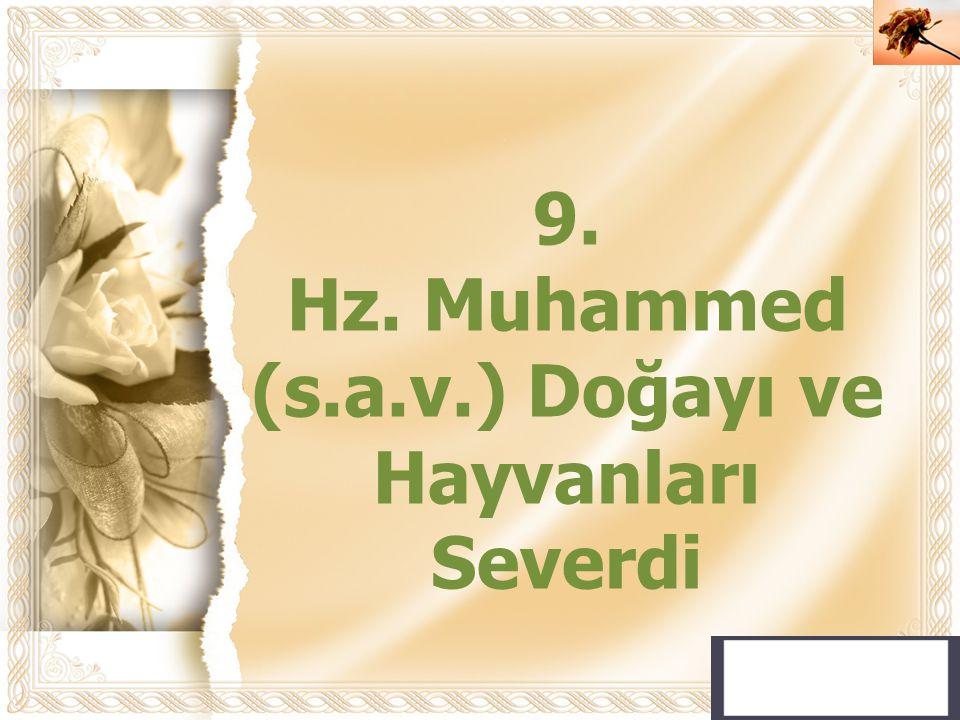 Cahide KAVAK 9. Hz. Muhammed (s.a.v.) Doğayı ve Hayvanları Severdi