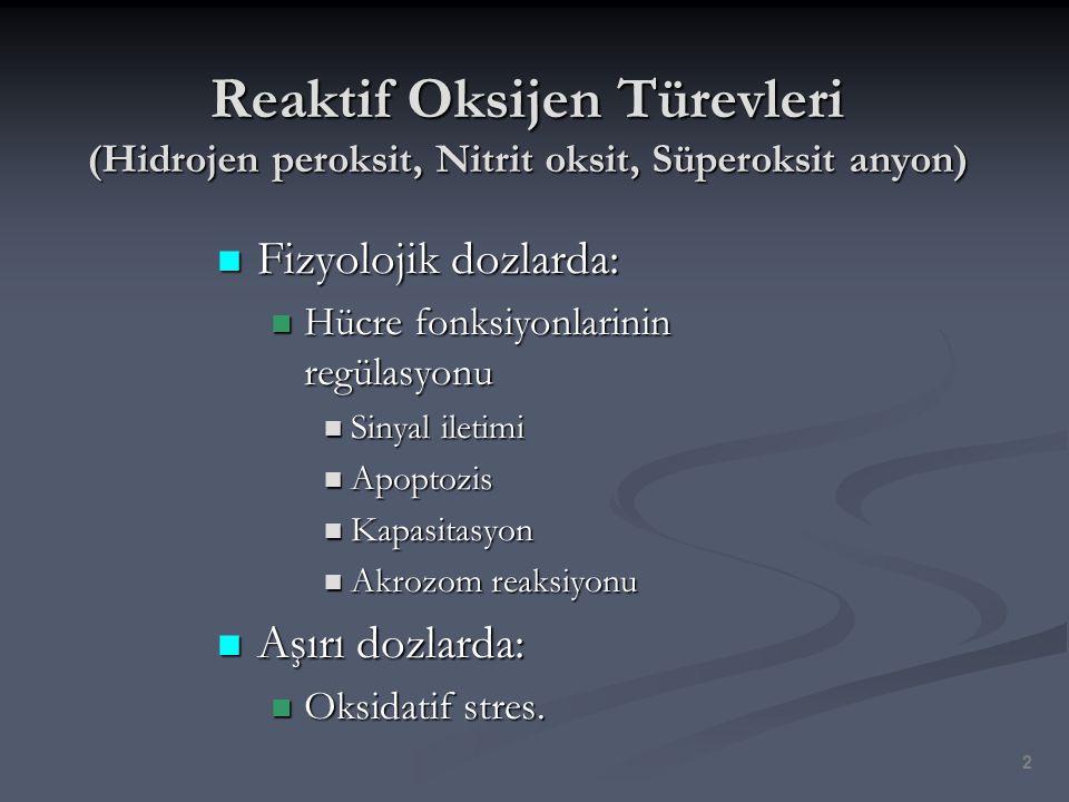 Reaktif Oksijen Türevleri (Hidrojen peroksit, Nitrit oksit, Süperoksit anyon) Fizyolojik dozlarda: Fizyolojik dozlarda: Hücre fonksiyonlarinin regülas