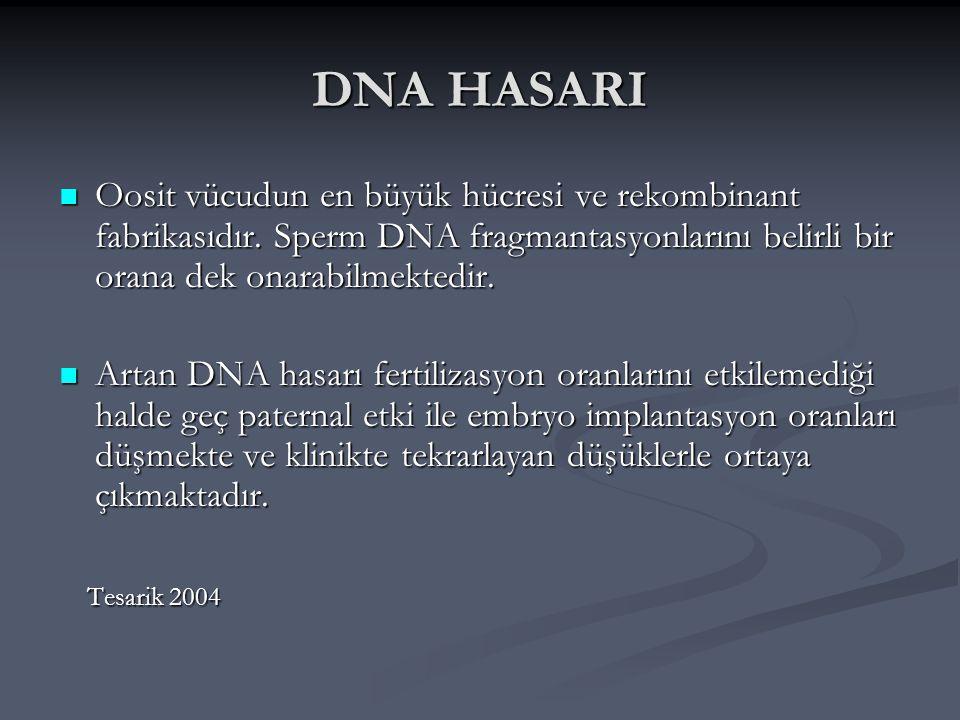 DNA HASARI Oosit vücudun en büyük hücresi ve rekombinant fabrikasıdır. Sperm DNA fragmantasyonlarını belirli bir orana dek onarabilmektedir. Oosit vüc