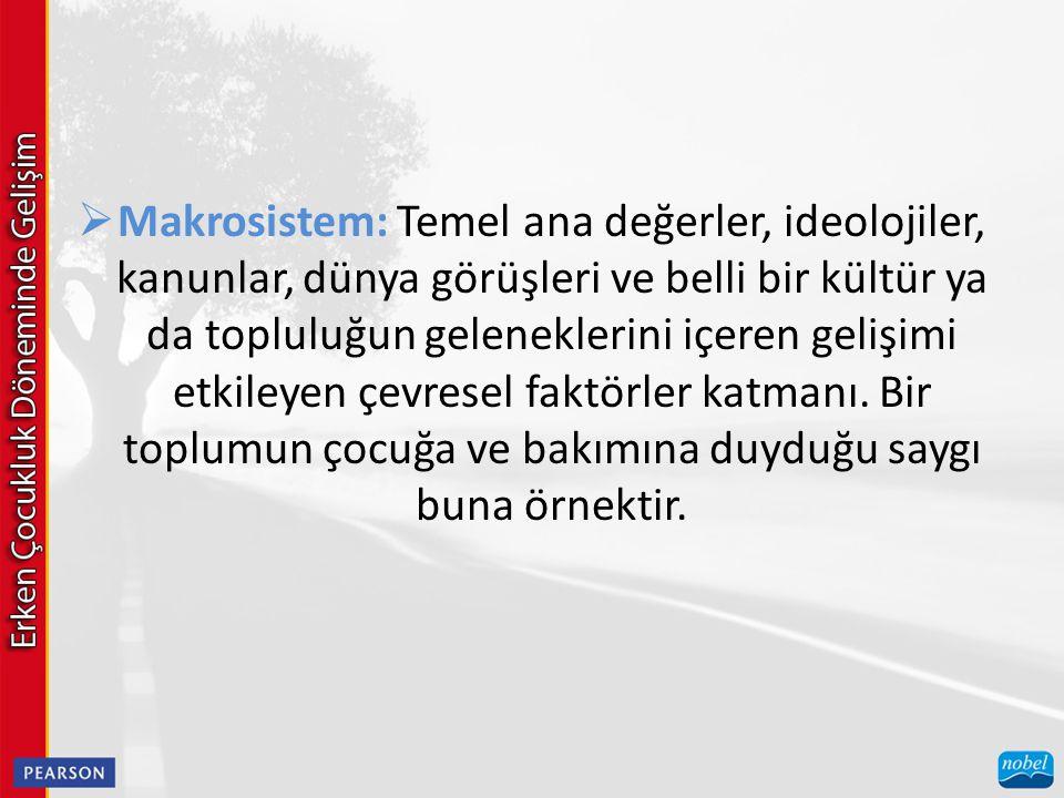  Makrosistem: Temel ana değerler, ideolojiler, kanunlar, dünya görüşleri ve belli bir kültür ya da topluluğun geleneklerini içeren gelişimi etkileyen