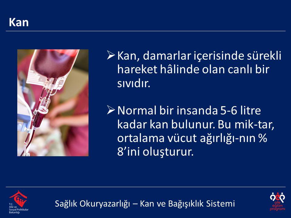 Kan Sağlık Okuryazarlığı – Kan ve Bağışıklık Sistemi  Kan, damarlar içerisinde sürekli hareket hâlinde olan canlı bir sıvıdır.  Normal bir insanda 5