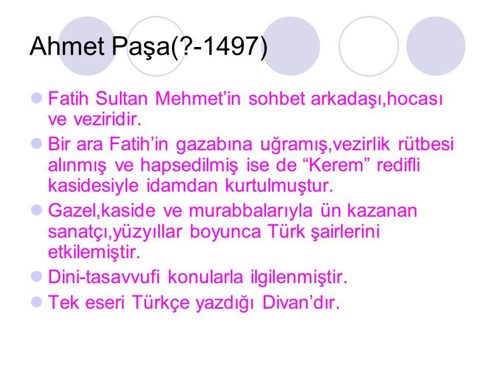 Ahmet Paşa(?-1497) Fatih Sultan Mehmet'in sohbet arkadaşı,hocası ve veziridir. Bir ara Fatih'in gazabına uğramış,vezirlik rütbesi alınmış ve hapsedilm