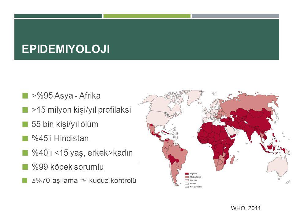 EPIDEMIYOLOJI >%95 Asya - Afrika >15 milyon kişi/yıl profilaksi 55 bin kişi/yıl ölüm %45'i Hindistan %40'ı kadın %99 köpek sorumlu ≥%70 aşılama  kuduz kontrolü WHO, 2011