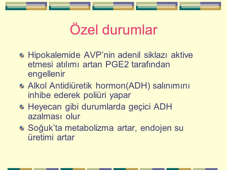 Özel durumlar Hipokalemide AVP'nin adenil siklazı aktive etmesi atılımı artan PGE2 tarafından engellenir Alkol Antidiüretik hormon(ADH) salınımını inh