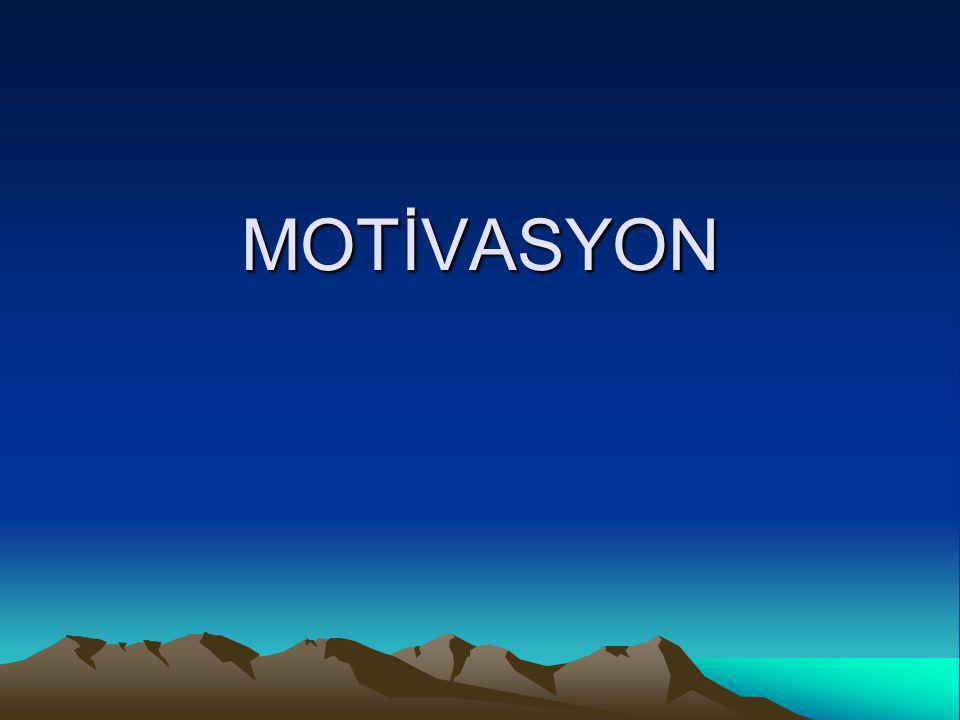 Bireyi motive etmek güdünün ötesinde bir kavramdır.