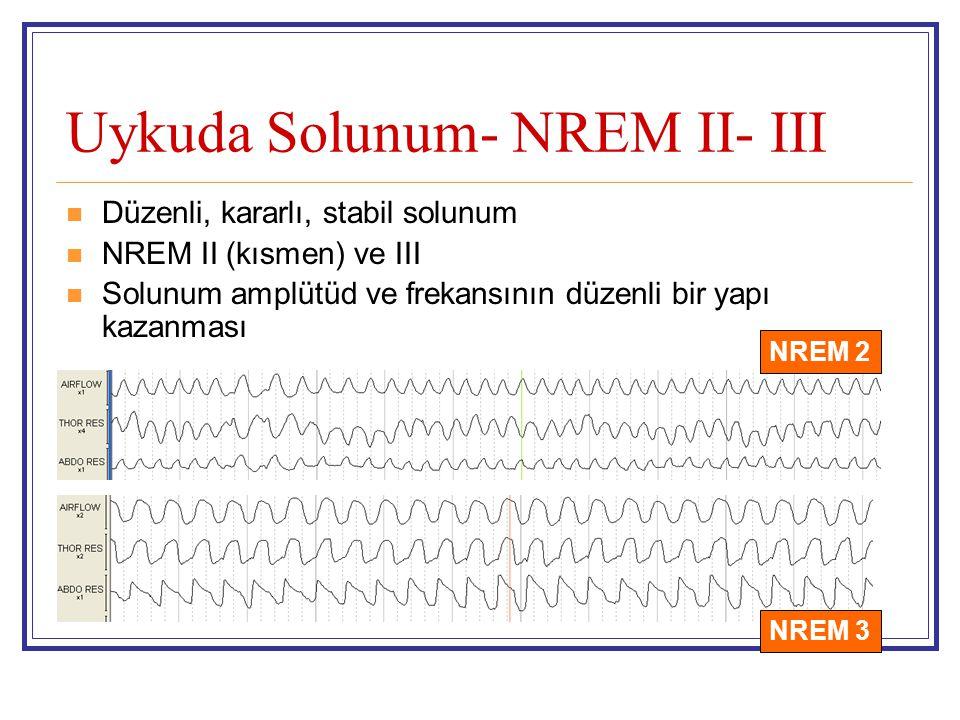 Uykuda Solunum- NREM II- III Düzenli, kararlı, stabil solunum NREM II (kısmen) ve III Solunum amplütüd ve frekansının düzenli bir yapı kazanması NREM