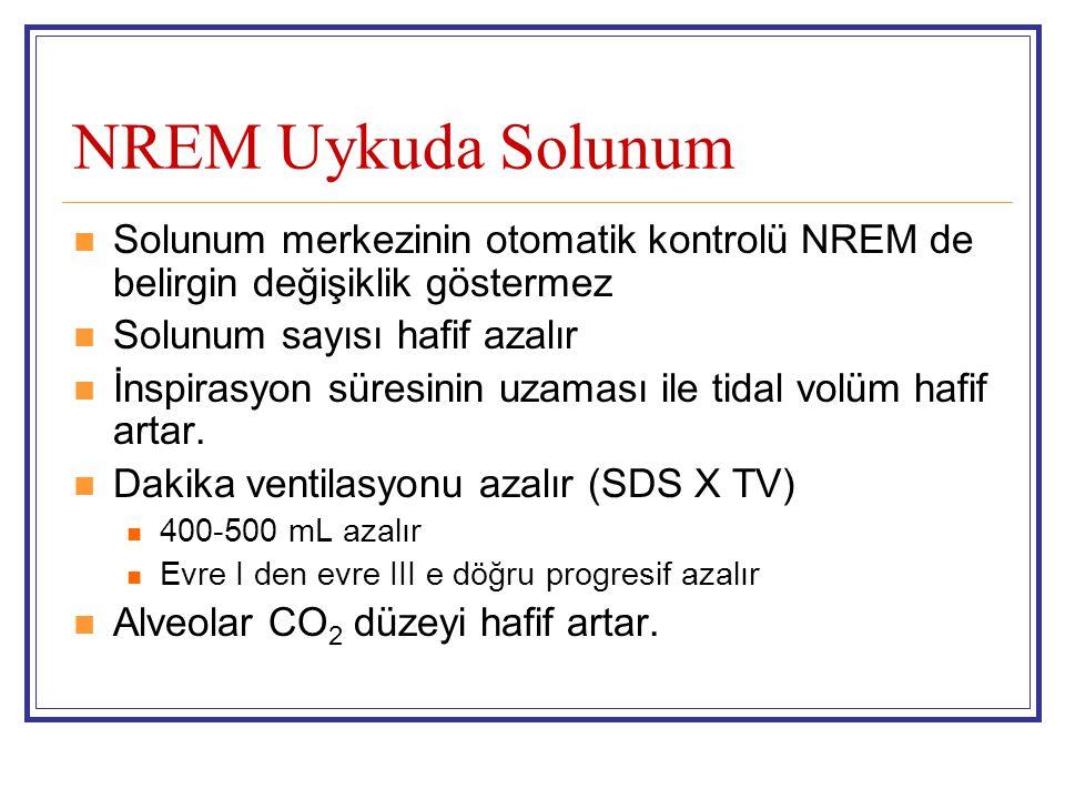 NREM Uykuda Solunum Solunum merkezinin otomatik kontrolü NREM de belirgin değişiklik göstermez Solunum sayısı hafif azalır İnspirasyon süresinin uzama