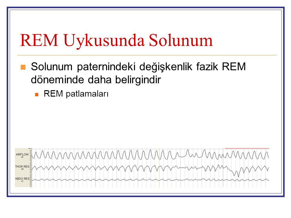REM Uykusunda Solunum Solunum paternindeki değişkenlik fazik REM döneminde daha belirgindir REM patlamaları