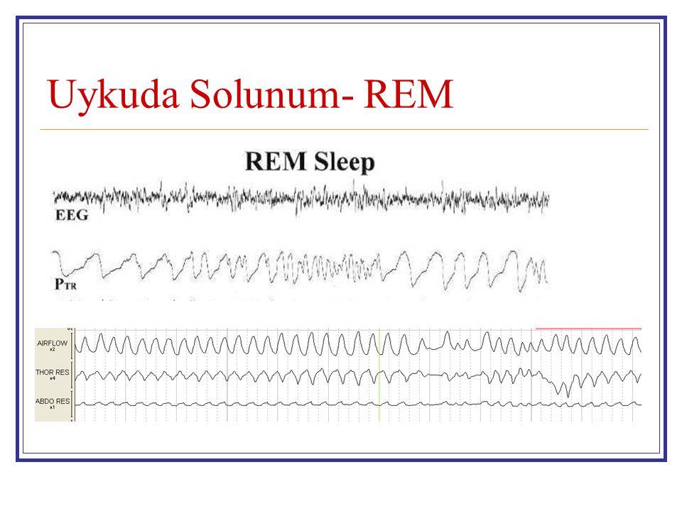 Uykuda Solunum- REM