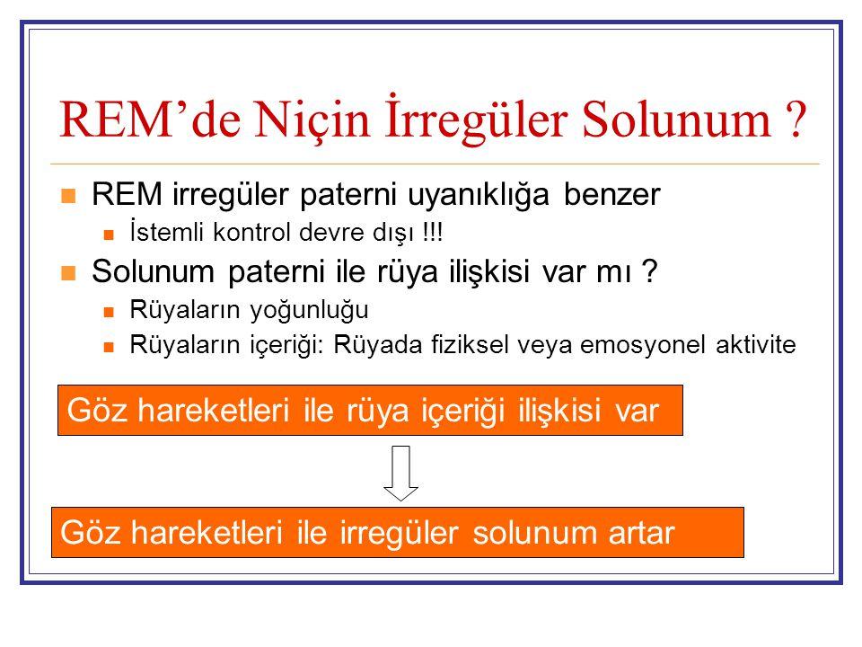 REM'de Niçin İrregüler Solunum ? REM irregüler paterni uyanıklığa benzer İstemli kontrol devre dışı !!! Solunum paterni ile rüya ilişkisi var mı ? Rüy