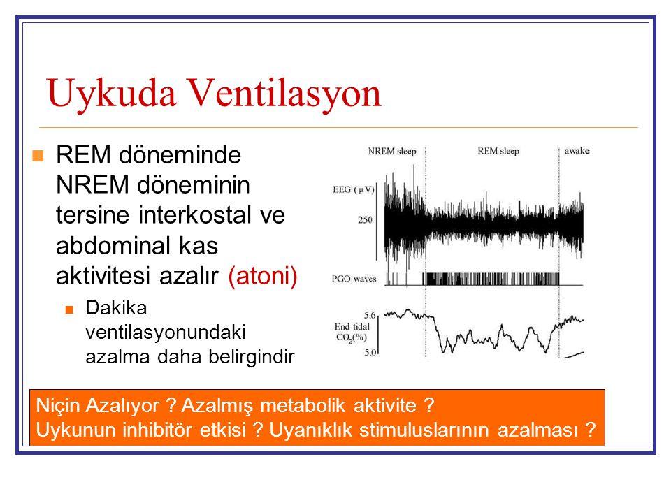 Uykuda Ventilasyon REM döneminde NREM döneminin tersine interkostal ve abdominal kas aktivitesi azalır (atoni) Dakika ventilasyonundaki azalma daha be