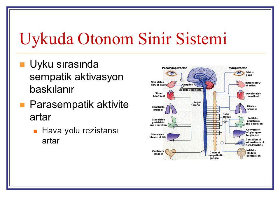 Uykuda Otonom Sinir Sistemi Uyku sırasında sempatik aktivasyon baskılanır Parasempatik aktivite artar Hava yolu rezistansı artar