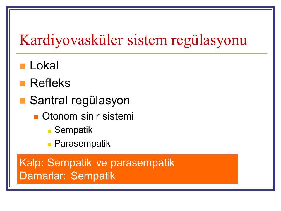 Kardiyovasküler sistem regülasyonu Lokal Refleks Santral regülasyon Otonom sinir sistemi Sempatik Parasempatik Kalp: Sempatik ve parasempatik Damarlar
