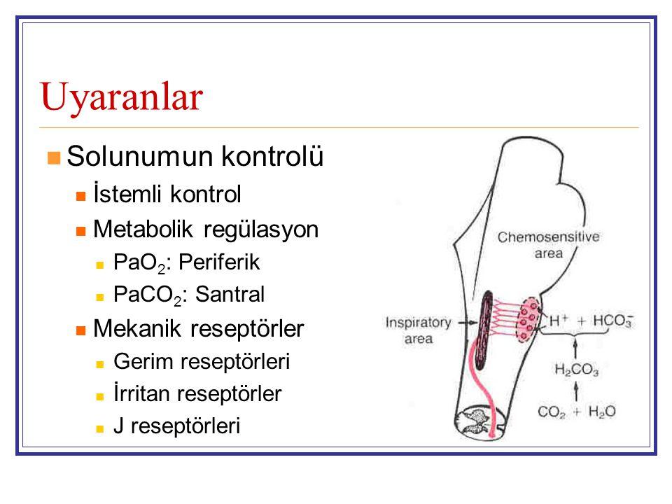Uyaranlar Solunumun kontrolü İstemli kontrol Metabolik regülasyon PaO 2 : Periferik PaCO 2 : Santral Mekanik reseptörler Gerim reseptörleri İrritan re