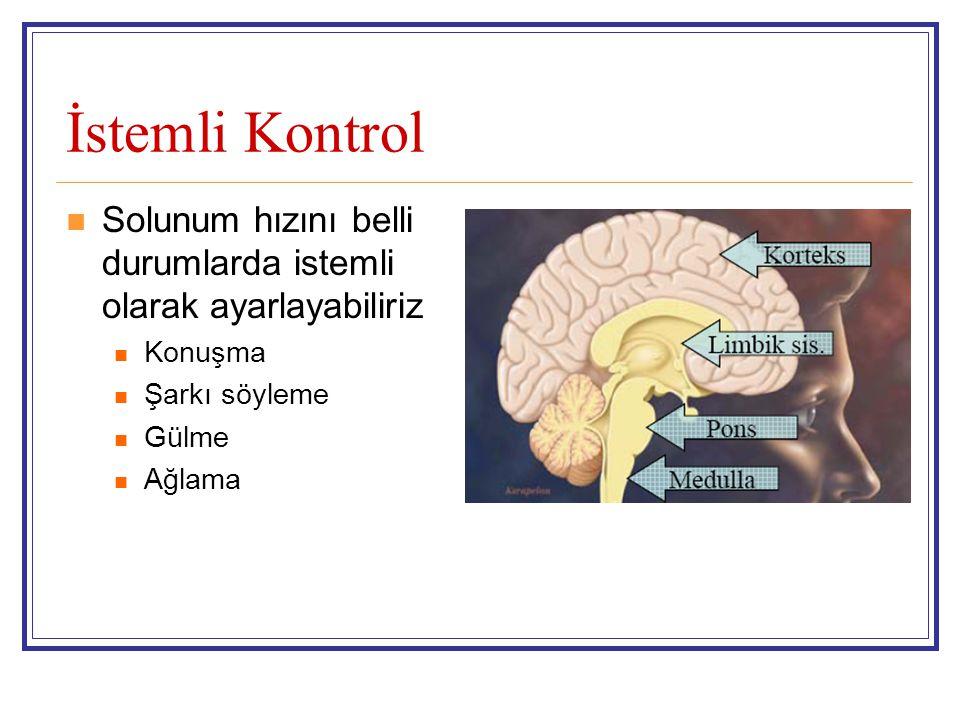 Uykuda Ventilasyon REM döneminde NREM döneminin tersine interkostal ve abdominal kas aktivitesi azalır (atoni) Dakika ventilasyonundaki azalma daha belirgindir Niçin Azalıyor .
