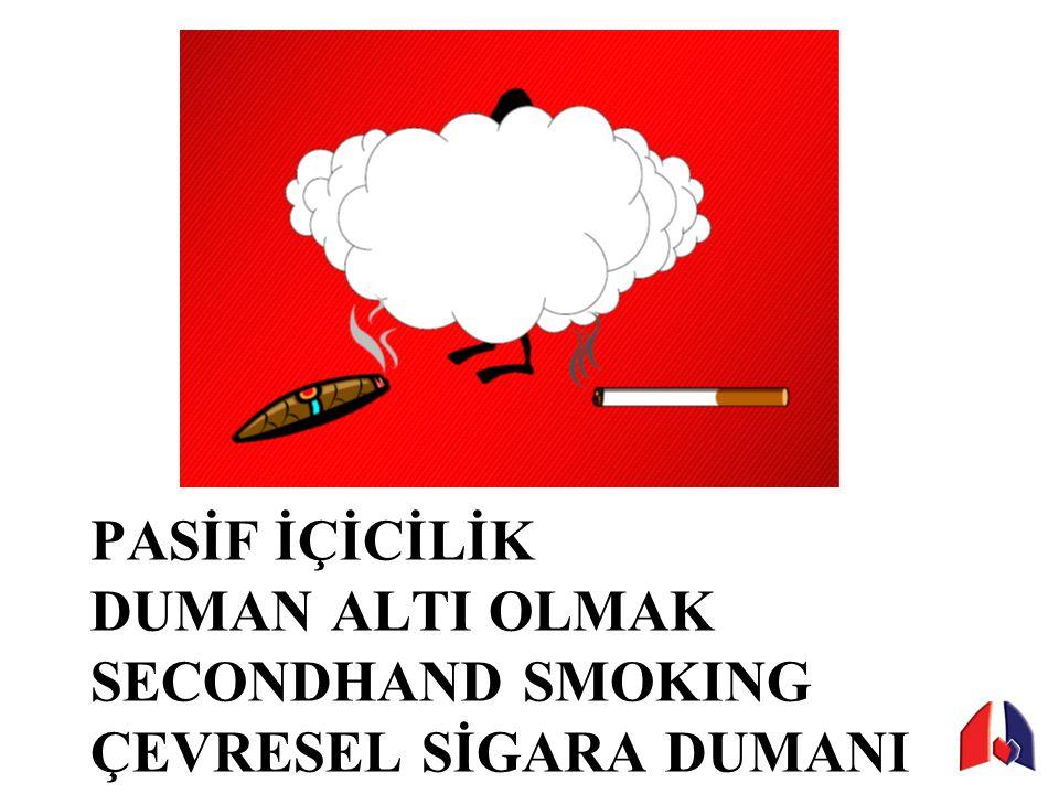 Ebeveynlerin sigara içmesi Arkadaşların sigara içmesi Sporcu ve sanatcıların Sigara reklamları BUGÜNÜN PASİF İÇİCİSİ YARININ AKTİF İÇİCİSİ!