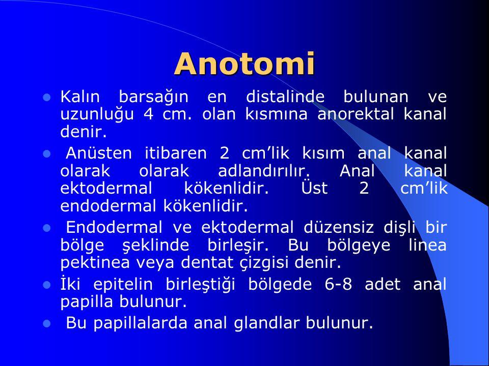 Anotomi Kalın barsağın en distalinde bulunan ve uzunluğu 4 cm. olan kısmına anorektal kanal denir. Anüsten itibaren 2 cm'lik kısım anal kanal olarak o